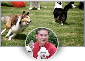 STEVE SMITH<br>Rover Oaks Pet Resort